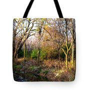 Wisconsin Scenic View Tote Bag