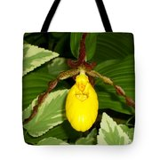 Wisconsin Yellow Lady Slipper Tote Bag