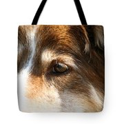 Wise Old Collie Eyes Tote Bag