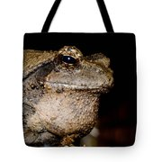 Wise Old Frog Tote Bag