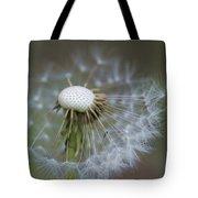 Wispy Dandelion Fluff Tote Bag