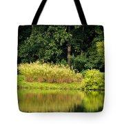 Wispy Wild Grass Reflections Tote Bag