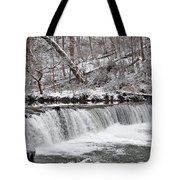 Wissahickon Waterfall In Winter Tote Bag by Bill Cannon