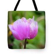 Wistfully Pink Tote Bag