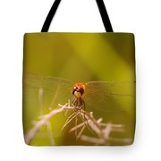 With Landing Gear Down  Tote Bag