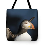 With Outstretched Wings Tote Bag