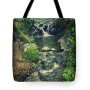 With You Here Beside Me Tote Bag by Laurie Search