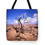 Withered Tree Paria Canyon Tote Bag