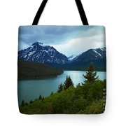 Within The Wind Tote Bag