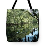 Withlacoochee River Reflections Tote Bag