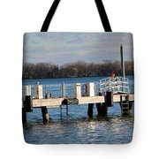 Without Fear Tote Bag