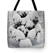 Wnter Tree 5 Tote Bag