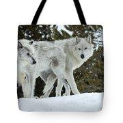 Wolf - Friend Tote Bag