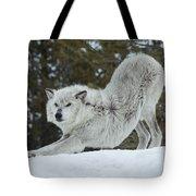 Wolf - Yoga Tote Bag
