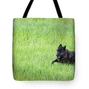 Wolf 889f Tote Bag