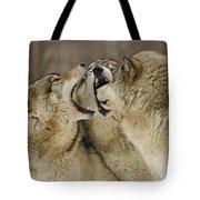 Wolf Display Tote Bag