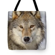 Wolf Face To Face Tote Bag
