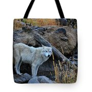 Wolf In The Wild Tote Bag