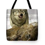 Wolf Protecting Kill Tote Bag