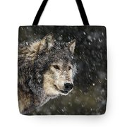 Wolf - Snow Storm Tote Bag
