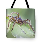 Wolf Spider In Dew  Tote Bag