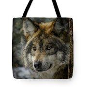 Wolf Upclose 2 Tote Bag