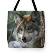 Wolf Upclose Tote Bag