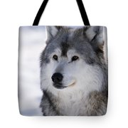Wolf Winter Portrait Tote Bag