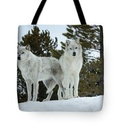 Wolves - Partners Tote Bag