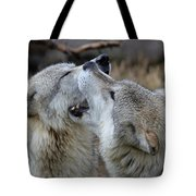 Wolves Playing Tote Bag