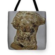 Woman #5 Tote Bag