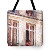 Woman In A Paris Window Tote Bag