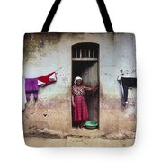 Woman In Front Of The House Democratic Tote Bag
