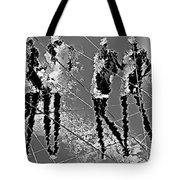 Women 509-11-13 Marucii Tote Bag