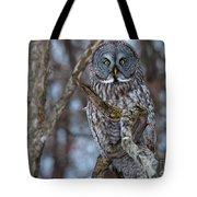 Wonderful Great Gray Tote Bag
