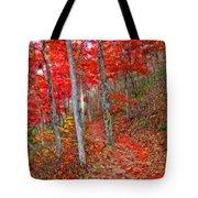 Wonders Of Autumn  Tote Bag