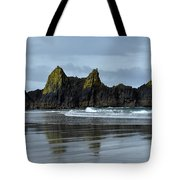 Wonders Of The Ocean Tote Bag