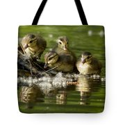 Wood Duck Babies Tote Bag