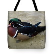 Wood Duck In The Water Tote Bag
