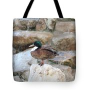 Wood Duck On Fountain Tote Bag