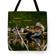 Wood Duck Rest Time Tote Bag