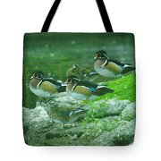 Wood Ducks Hanging Out Tote Bag