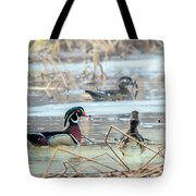 Wood Ducks In The Mist Tote Bag