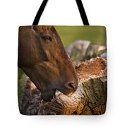 Wood Eater Tote Bag
