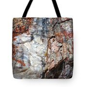 Wood From Another Era Tote Bag