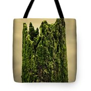Wood In The Bay Tote Bag