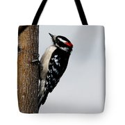Wood Pecker Tote Bag