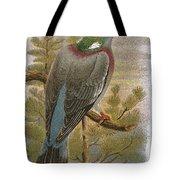 Wood Pigeon Tote Bag