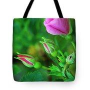 Wood Rose Buds Rosa Woodsii Wild Tote Bag