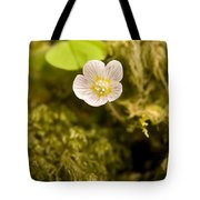Wood Sorrel Tote Bag